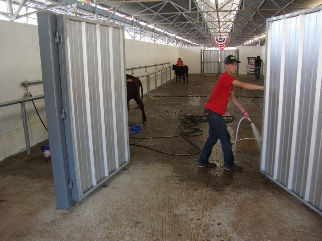 Texas_State_Fair_cattle-barn2