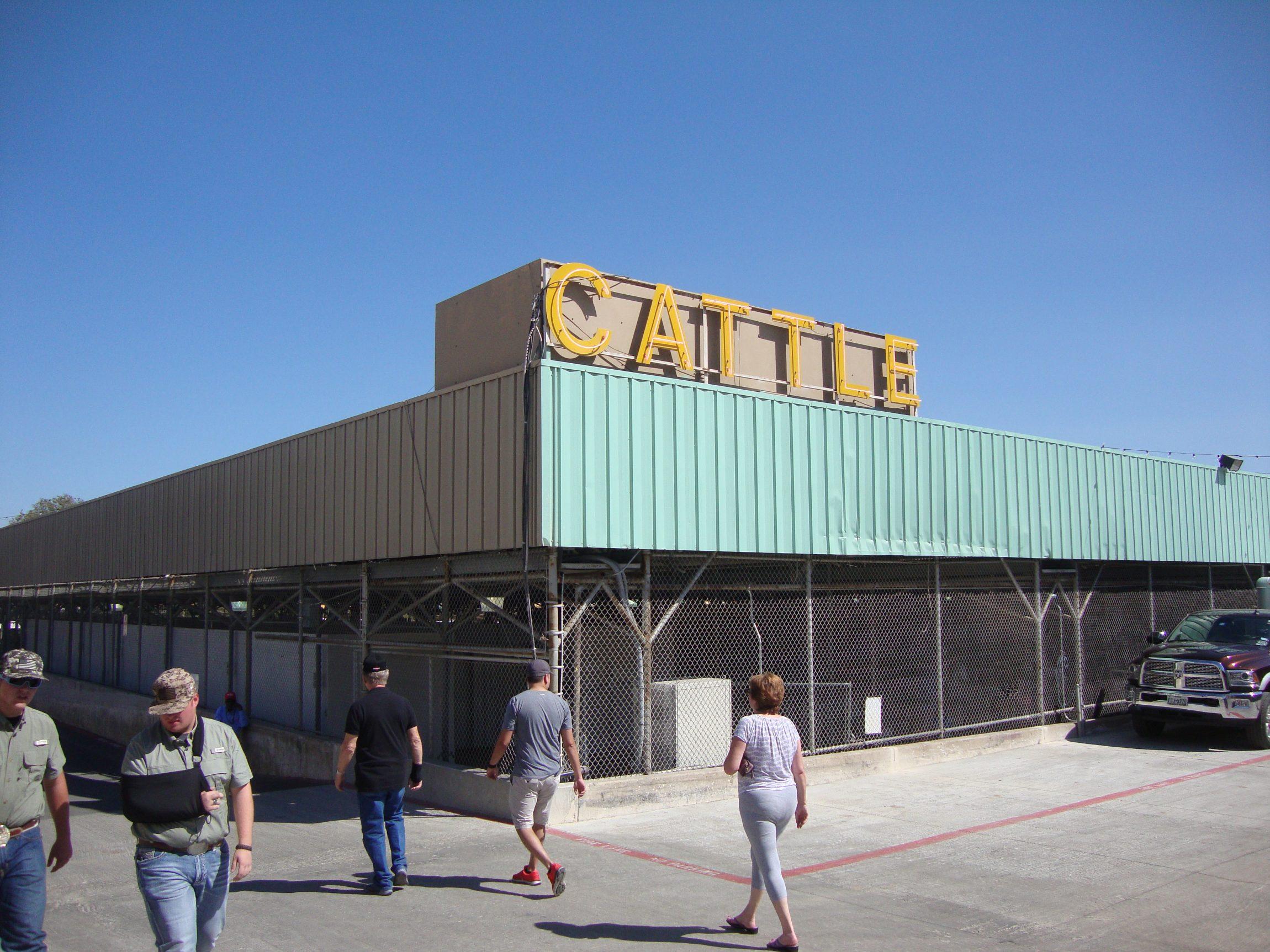 Texas_State_Fair_cattle-barn5